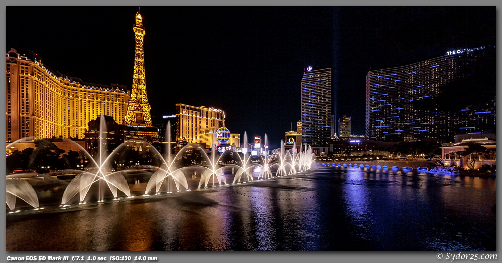 IMAGE: http://sydor25.com/Pictures/Las_Vegas_1.22.13-1248_10x20.jpg